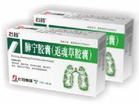 肺宁胶囊(返魂草胶囊)