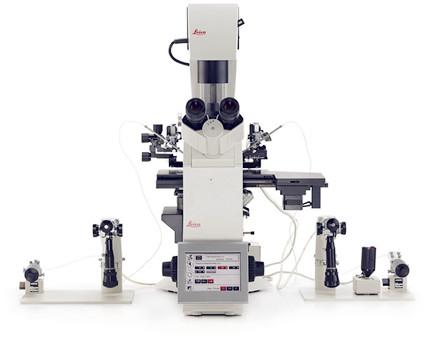 供应徕卡倒置生物显微镜DMi8