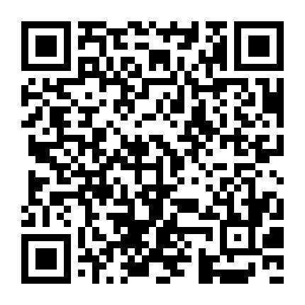 二甲双胍格列本脲片(Ⅰ)二维码