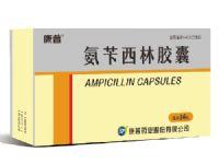 氨苄西林胶囊